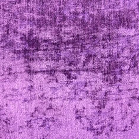 Padan 06 Violetta